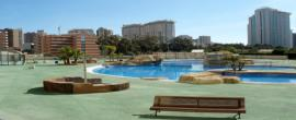 Apartment  to rent       in Benidorm                                           - Spain